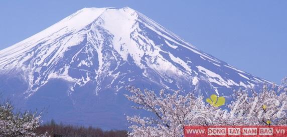 Tour du lịch Nhật Bản 6 Ngày Tokyo-Hakone-Fuji Osaka-Kyoto-Kobe